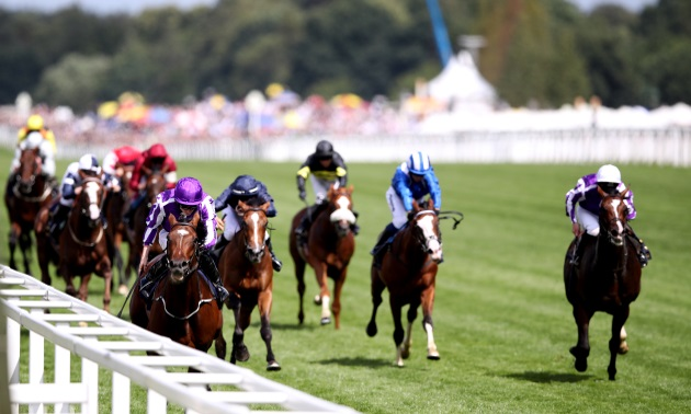 Rowleyfile Preview: Cesarewitch