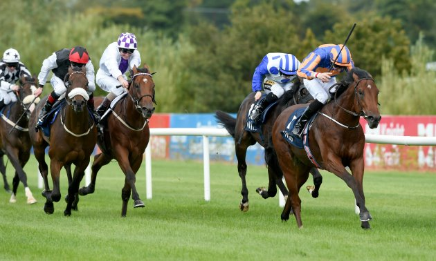 Irish Champion Stakes Day: Poet can have the last Word