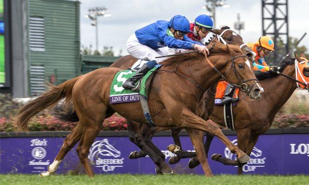 dante stakes winner 2019