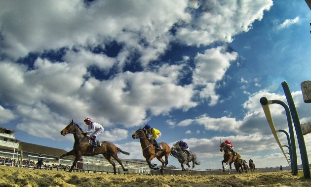 My Timeform: Eye-catchers from Beverley, Lingfield and Newmarket