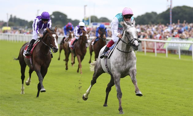 Ratings Update | Timeform ratings changes from the 2019 St Leger meeting at Doncaster