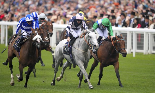 Timefigure preview: Champions Day