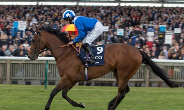 Mill Reef Stakes Preview: Zaat's the way to do it
