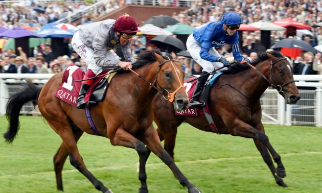My Timeform Filter: Friday September 21
