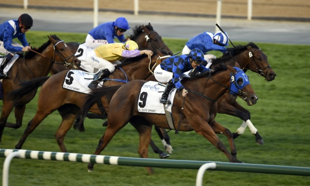 Al Quoz Sprint: Hard to get away from Ertijaal