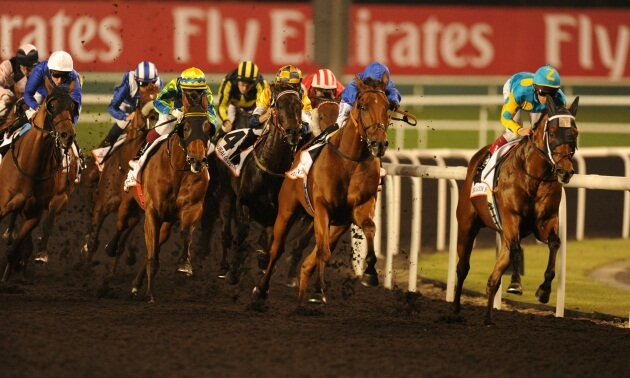 Meydan Best Bets: Thursday 17 January