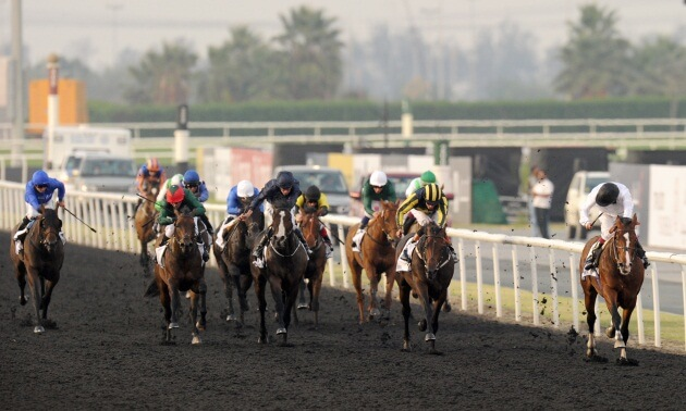 Dubai Carnival Horses To Watch: From West to East