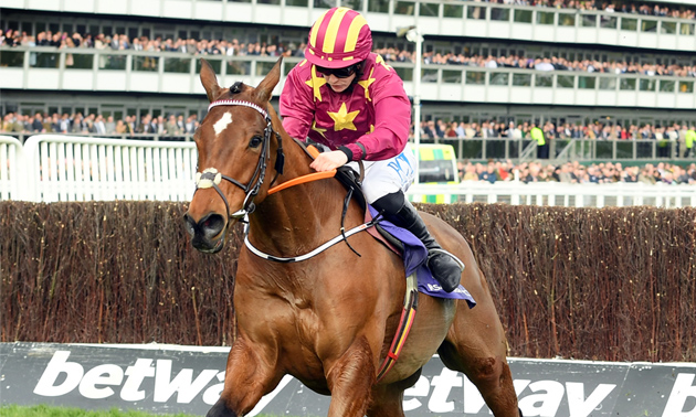 Cheltenham gold cup 2021 betting tips betting wikihow rubiks cube
