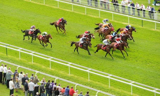 Sectional Timing Preview: York Ebor Festival