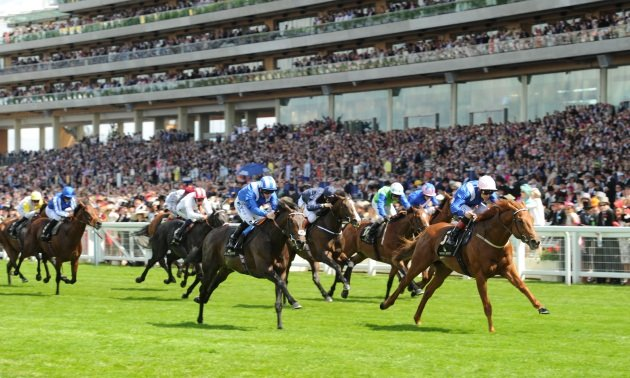 Rowleyfile Investigates: Exchange betting activity at Royal Ascot 2015