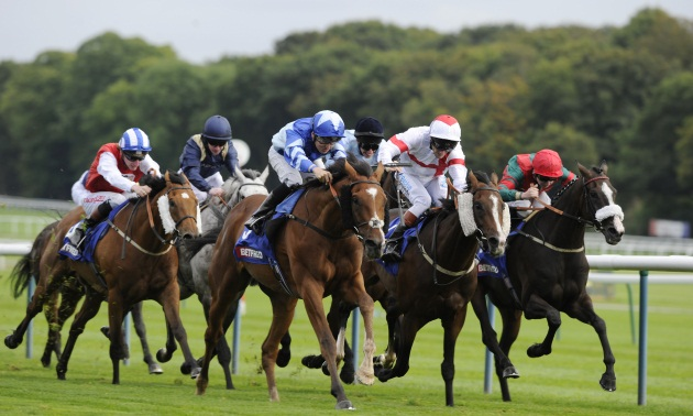 Northumberland Plate Preview: Dunlop's charge to provide a Fantasy ending