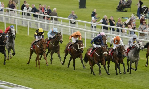 My Timeform: Horses to watch from the St Leger meeting