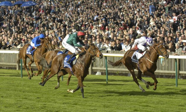 Blast From The Past: 2008 Champion Stakes