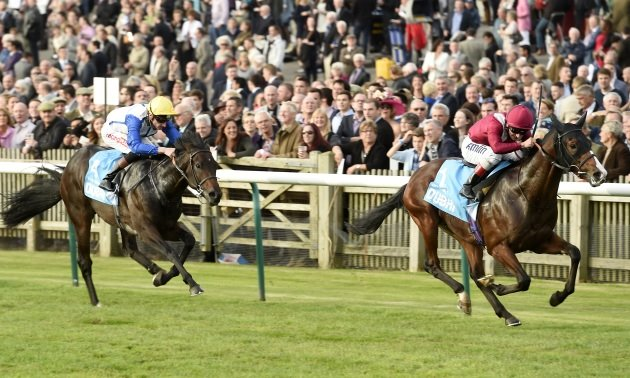 My Timeform: Eye-catchers from the Guineas meeting