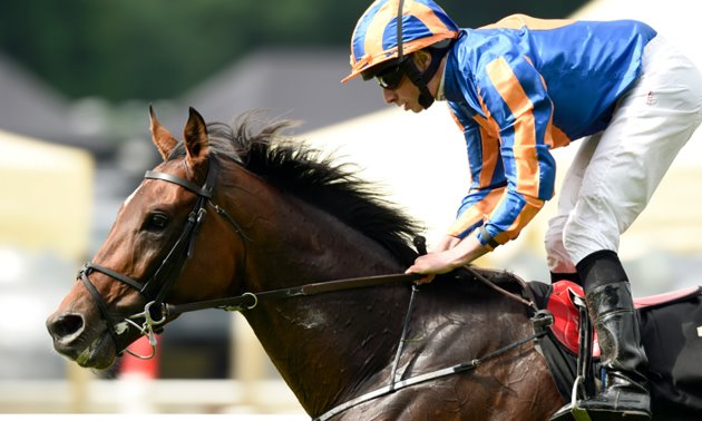 Irish St Leger day: All in order for St George?