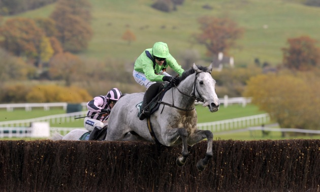 Paddy Power Gold Cup Preview: Another winner in the Pipe-line