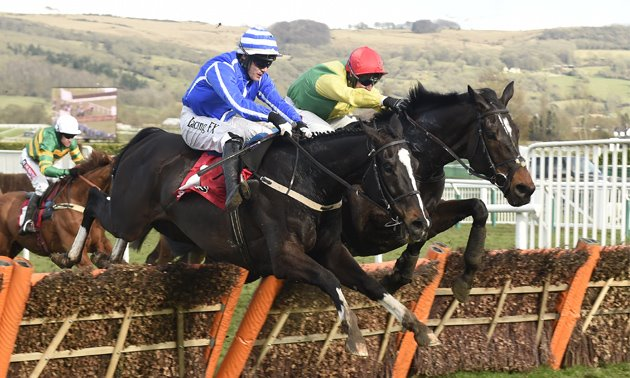 Penhill heads a record 23 Irish entries for Stayers' Hurdle