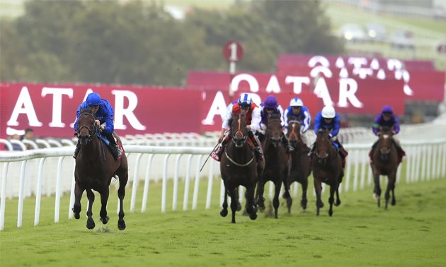 TImeform Flat Awards: Pinatubo a standout in 2019