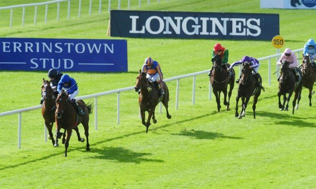 Weekend Preview: Dewhurst a pointer and not the point