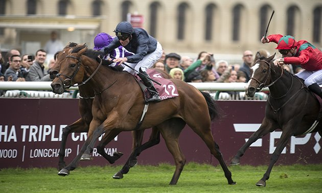 Queen Anne Stakes Preview: Total Recol