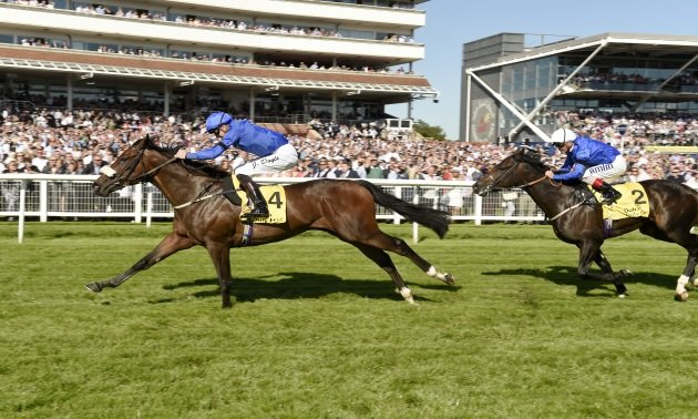 Lockinge Stakes Preview: Rib worth a tickle