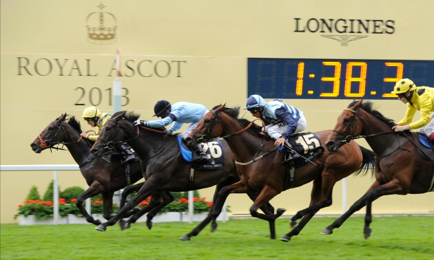Jamie Lynch: Royal Ascot A to Z