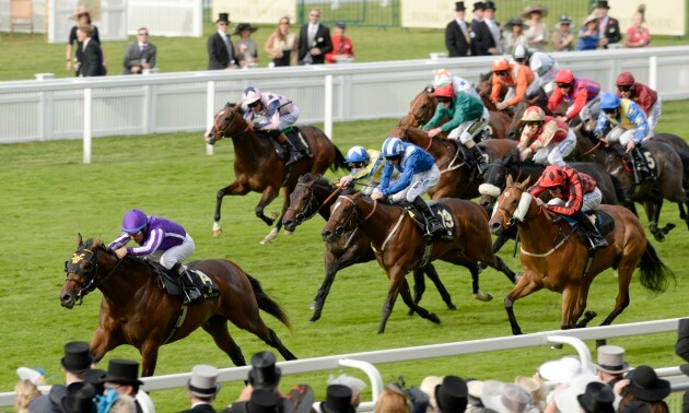 2019 Wokingham Stakes Betting Tips and Trends | Royal Ascot