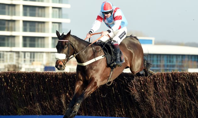 Champion Chase Preview: Saint Calvados the each-way play