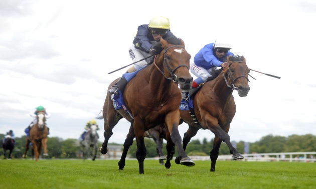 Ratings Update: Hawkbill wounds The Gurkha in Eclipse thriller