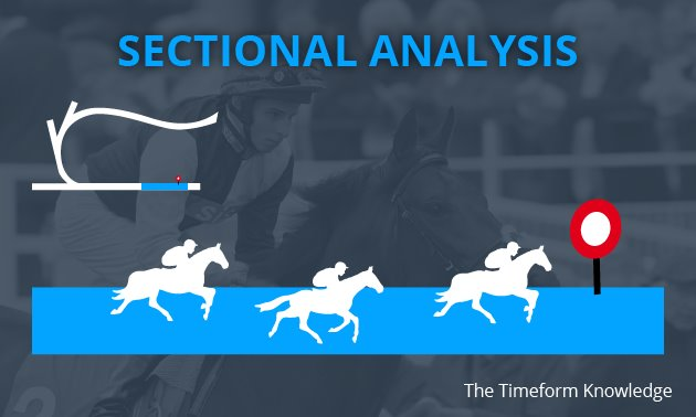 The Timeform Knowledge: Sectional Analysis
