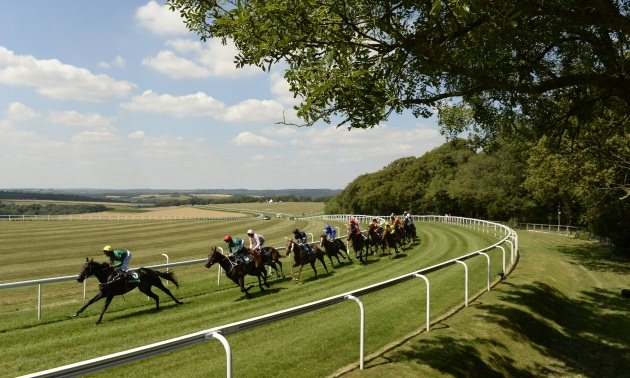 Timefigure preview: Glorious Goodwood Part 1