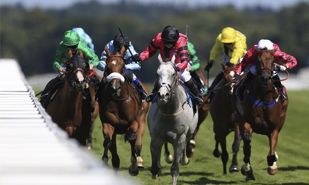Saturday's Ascot Shergar Cup Horse Racing Tips and Free Bets