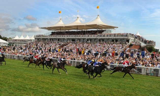 Timeform TV Focus: Friday July 31