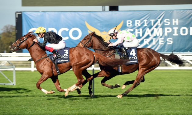 Best Free Bets and Betting Offers for Friday's racing at Doncaster