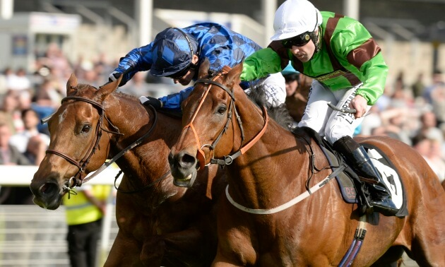 My Timeform: Eye-catchers from Goodwood, Kempton and York