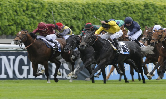 Prix maurice de gheest betting online