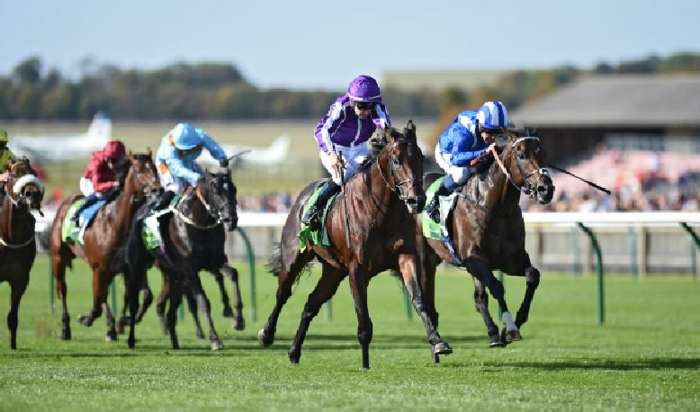 2019 2000 Guineas Trial | Sovereigns and Madhmood headline
