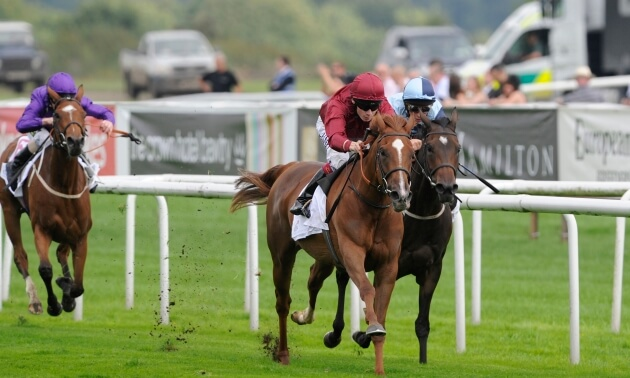 My Timeform Filter: Monday September 17