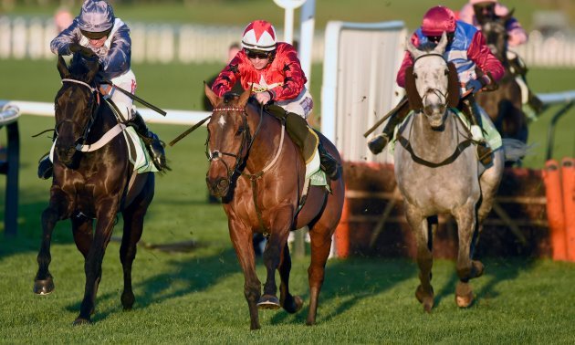 Ratings Update: Cheltenham, Cork and Punchestown