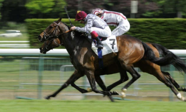 French 2000 Guineas Preview: Spotify can call the tune for Ferland