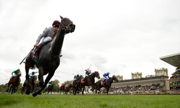 Timeform Jury Daily: Tuesday August 21