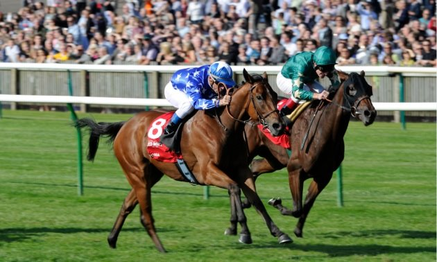 Prix Robert Papin Preview: Venecia to turn on the Style