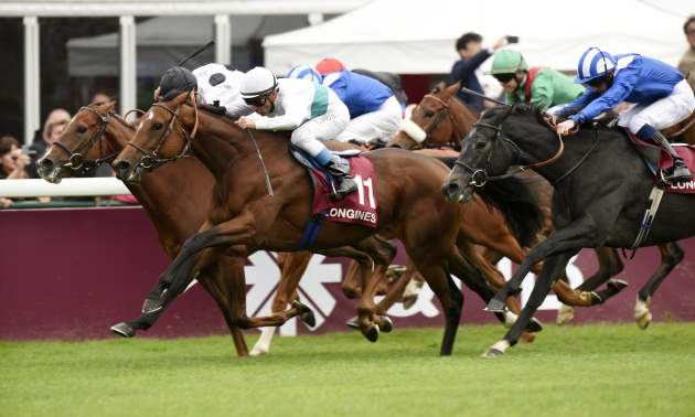Timeform TV Focus: Sunday October 4