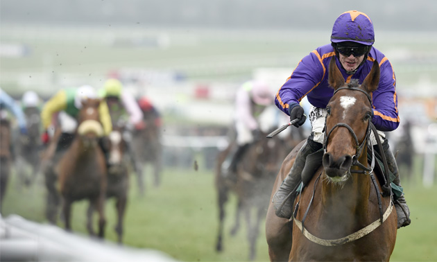 Wicklow Brave dies following fall in American Grand National