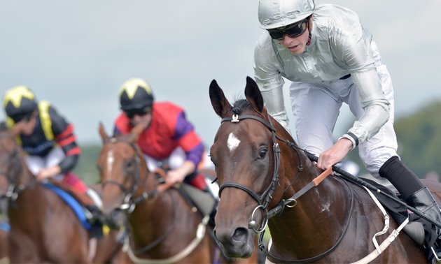 Ebor Festival Preview: Five handicappers to follow