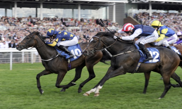 My Timeform: Eyecatchers from York's Ebor meeting
