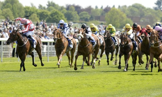 My Timeform: Eye-catchers from Uttoxeter, York and Pontefract