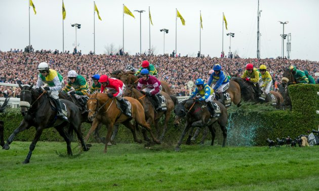 grand_national_16_fence_630_x_3780.jpg