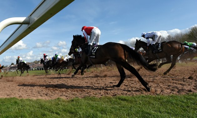 grand_national_runners_630_x_3780.jpg
