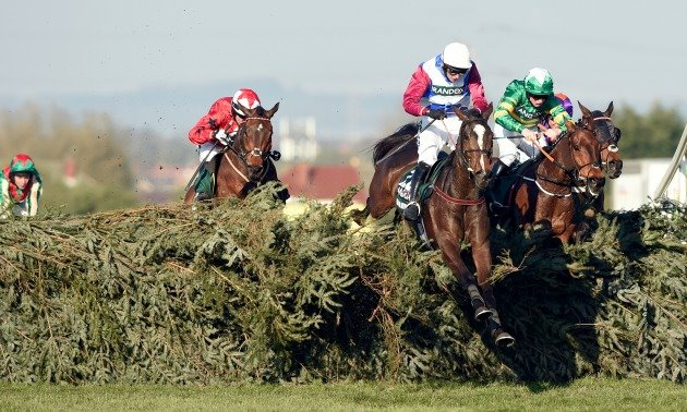 one_for_arthur_grand_national_fence_630x3780.jpg